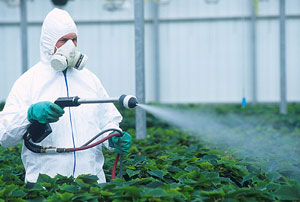 pesticide, poison, maladie, cancer, toxique, avenir, alimentation