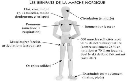 marche-nordique, F.Duval-Levesque psychopraticien et hypnothérapeute