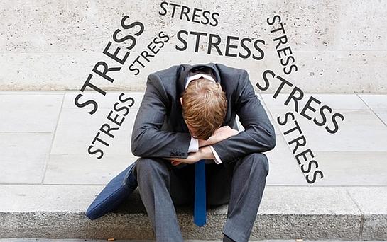 Stress les m canismes d une usure au quotidien for Le stress